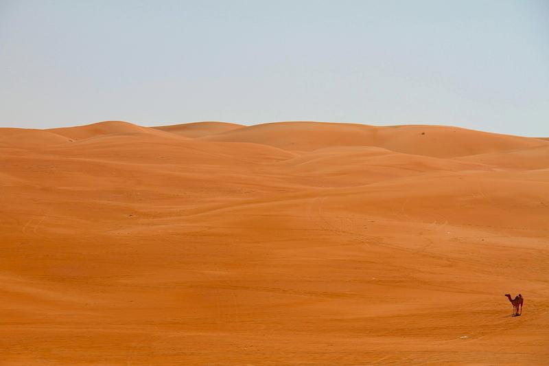 Poušť Liwa není žádné Zelené údolí