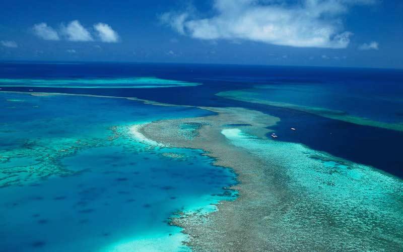 Velký bariérový útes – potápěčův sen