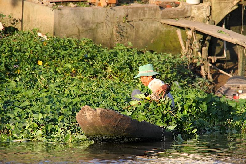 Delta Mekongu – Vietnam